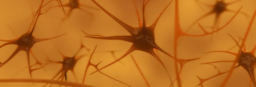 Diagnostik und Therapie der Parkinson-Krankheit